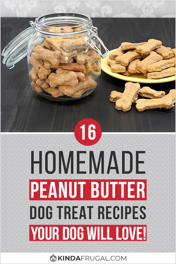 Here are 16 awesome recipes for homemade peanut butter dog treats your dog is sure to love. Fun, easy to make, and healthy! #dogtreats #homemade #peanutbutterdogtreats